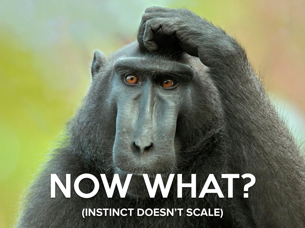 NOW WHAT? (INSTINCT DOESN'T SCALE)