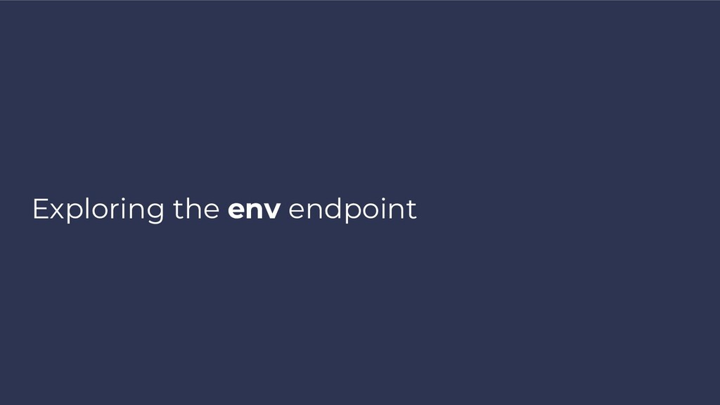 Exploring the env endpoint