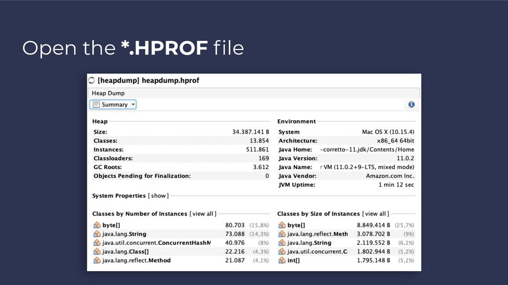 Open the *.HPROF file