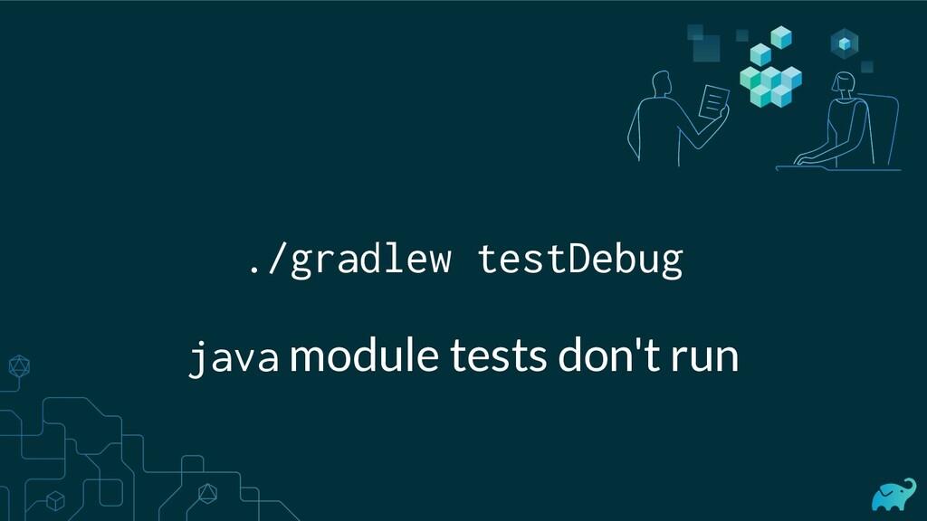 ./gradlew testDebug java module tests don't run
