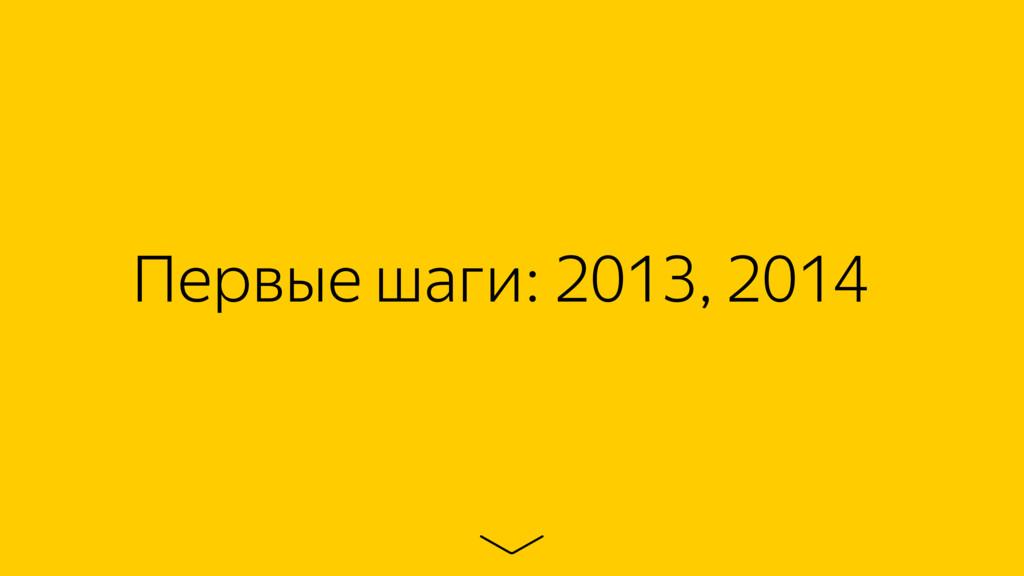 Первые шаги: 2013, 2014