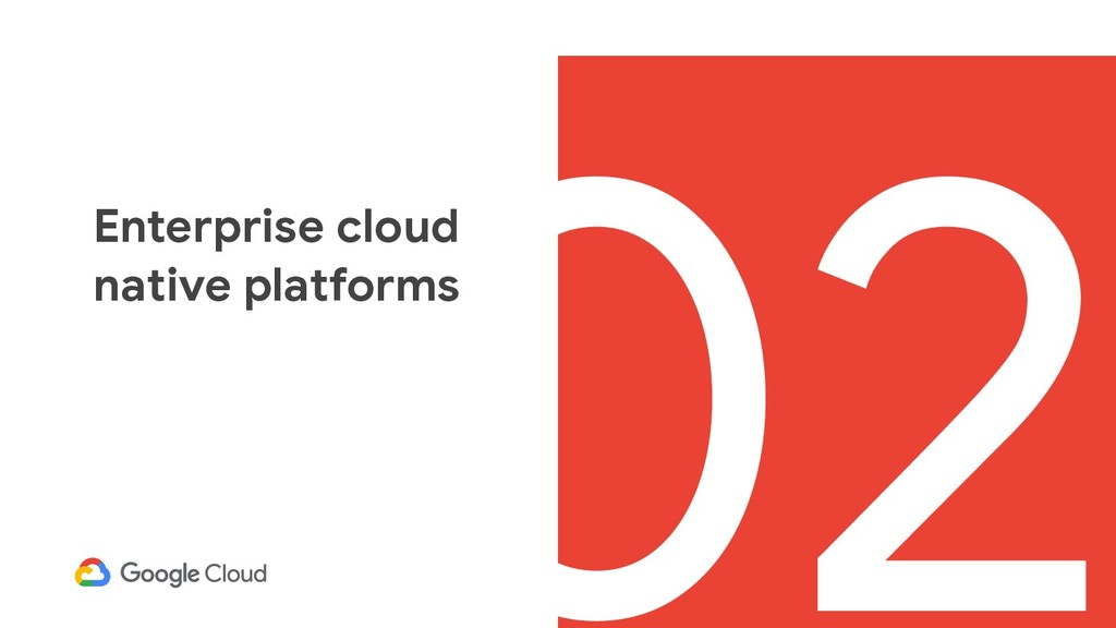 02 Enterprise cloud native platforms