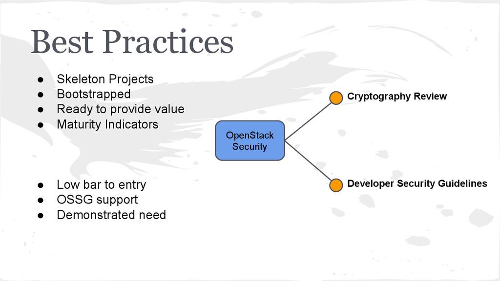 Best Practices OpenStack Security Developer Sec...