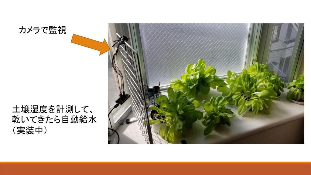 カメラで監視 土壌湿度を計測して、 乾いてきたら自動給水 (実装中)