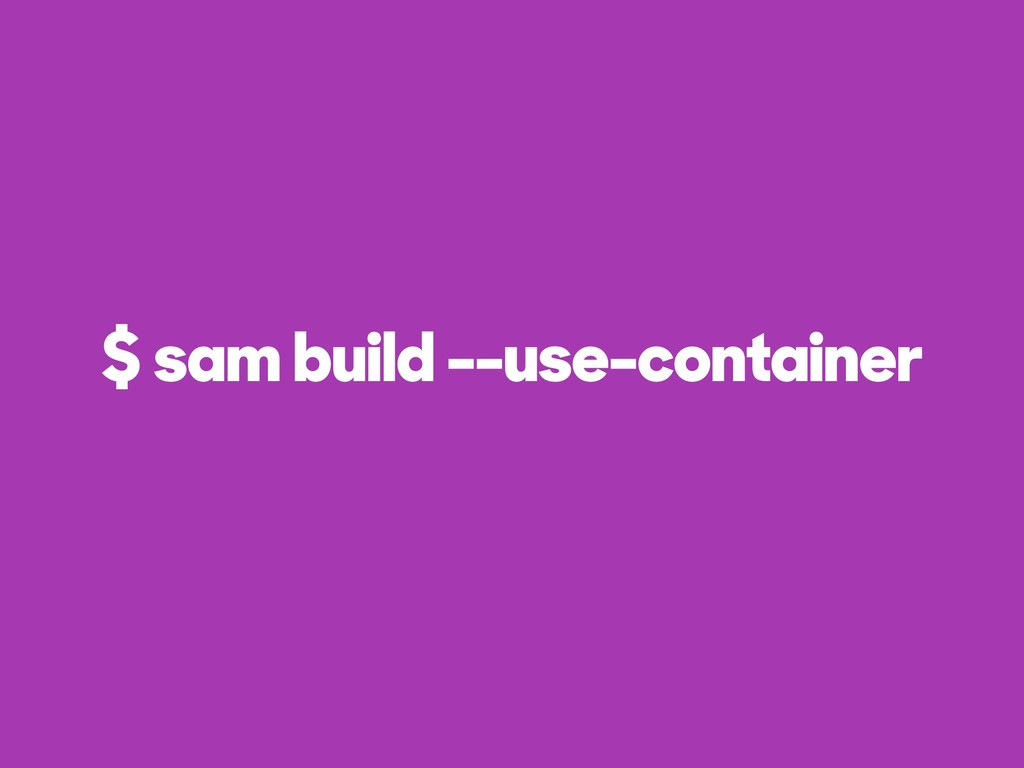 $ sam build --use-container