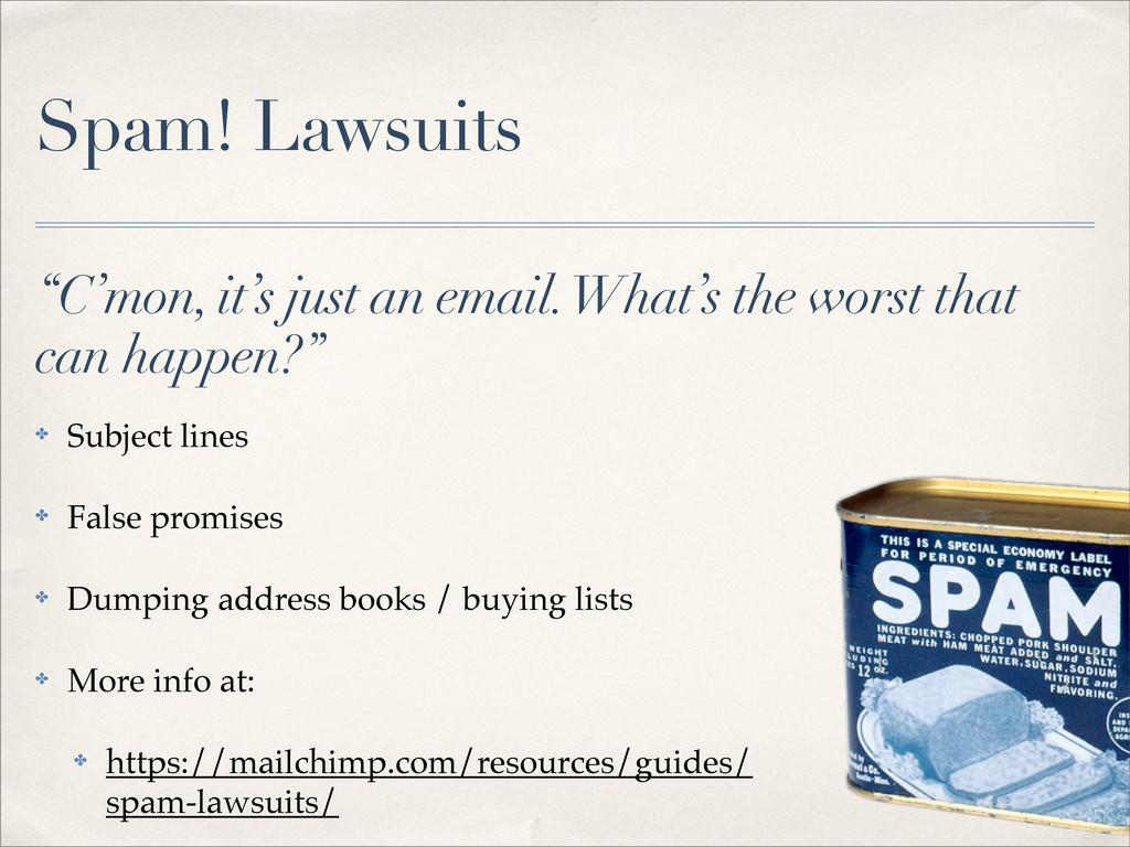 Spam! Lawsuits ✤ Subject lines ✤ False promises...