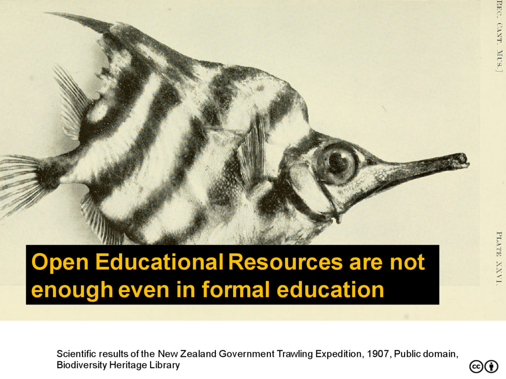 Open Educational Resources are not enough even ...