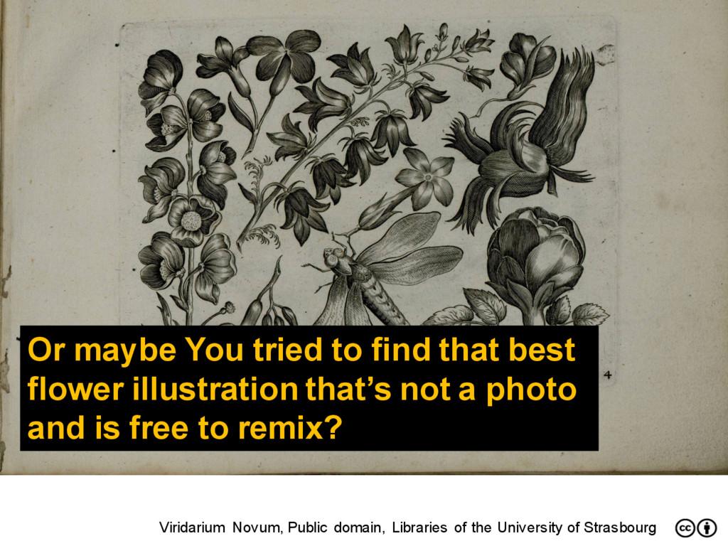 Viridarium Novum, Public domain, Libraries of t...