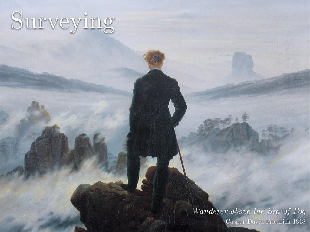 Wanderer above the Sea of Fog Caspar David Fri...