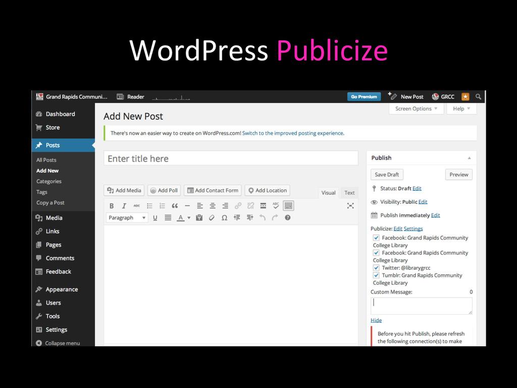 WordPress Publicize