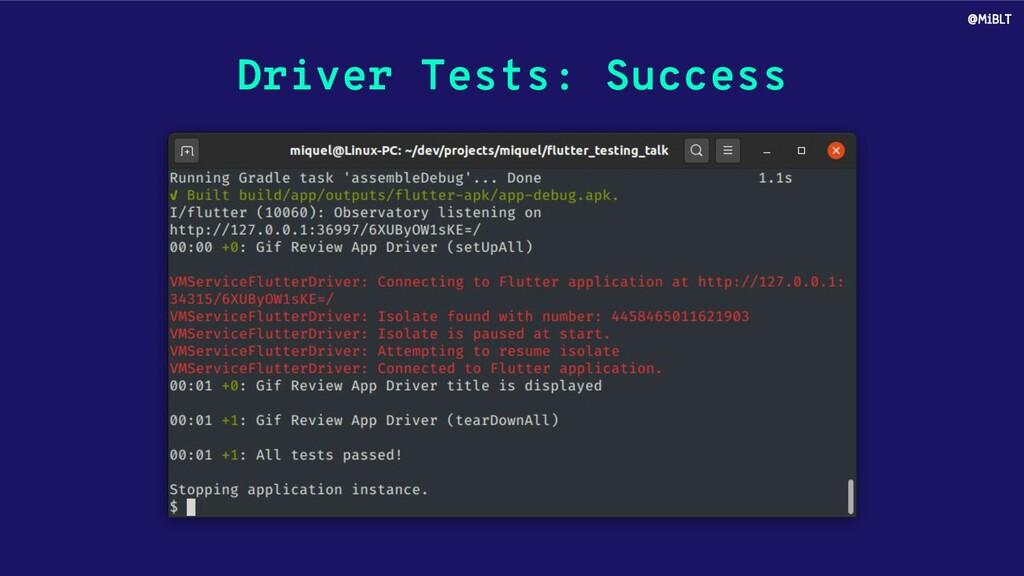 Driver Tests: Success @MiBLT
