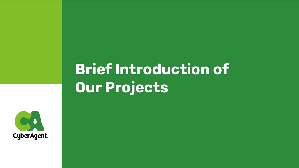 Brief Introduction of Our Projects