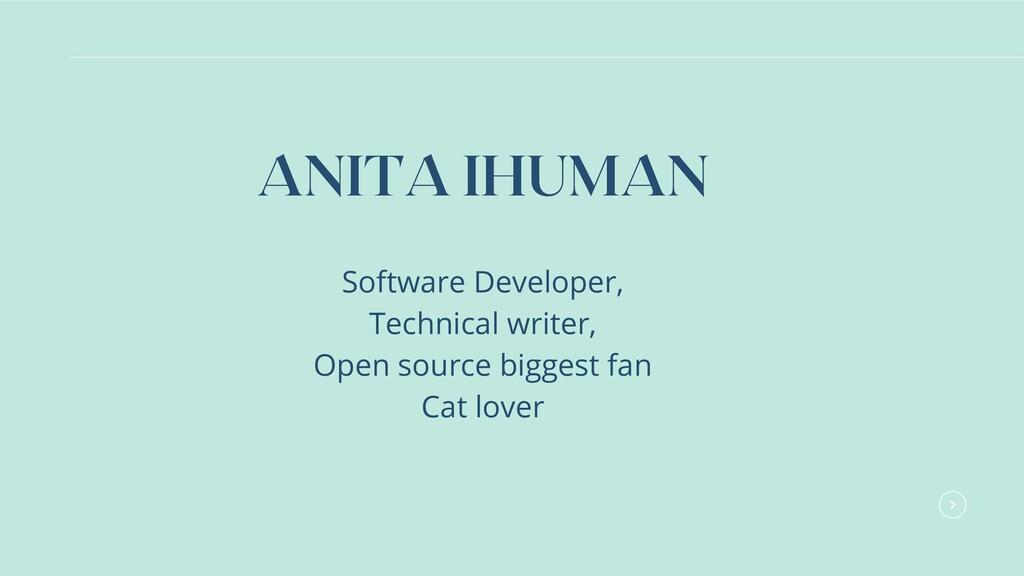Software Developer, Technical writer, Open sour...