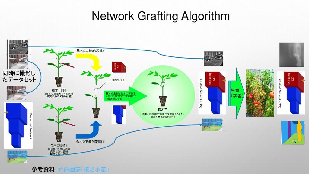 Network Grafting Algorithm 参考資料:竹内園芸「接ぎ木苗」 生育 (...