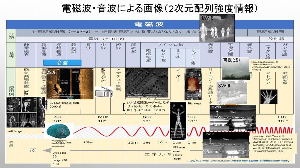 電磁波・音波による画像(2次元配列強度情報) SAR(合成開口レーダー)Lバンド (1〜2GH...