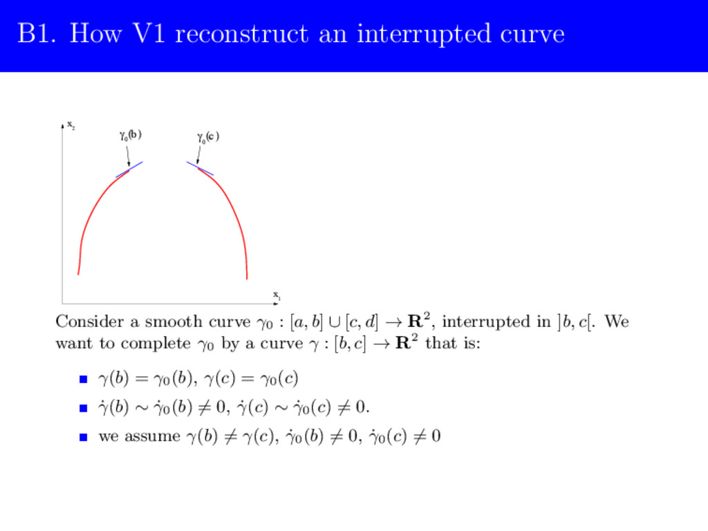 B1. How V1 reconstruct an interrupted curve 2 γ...