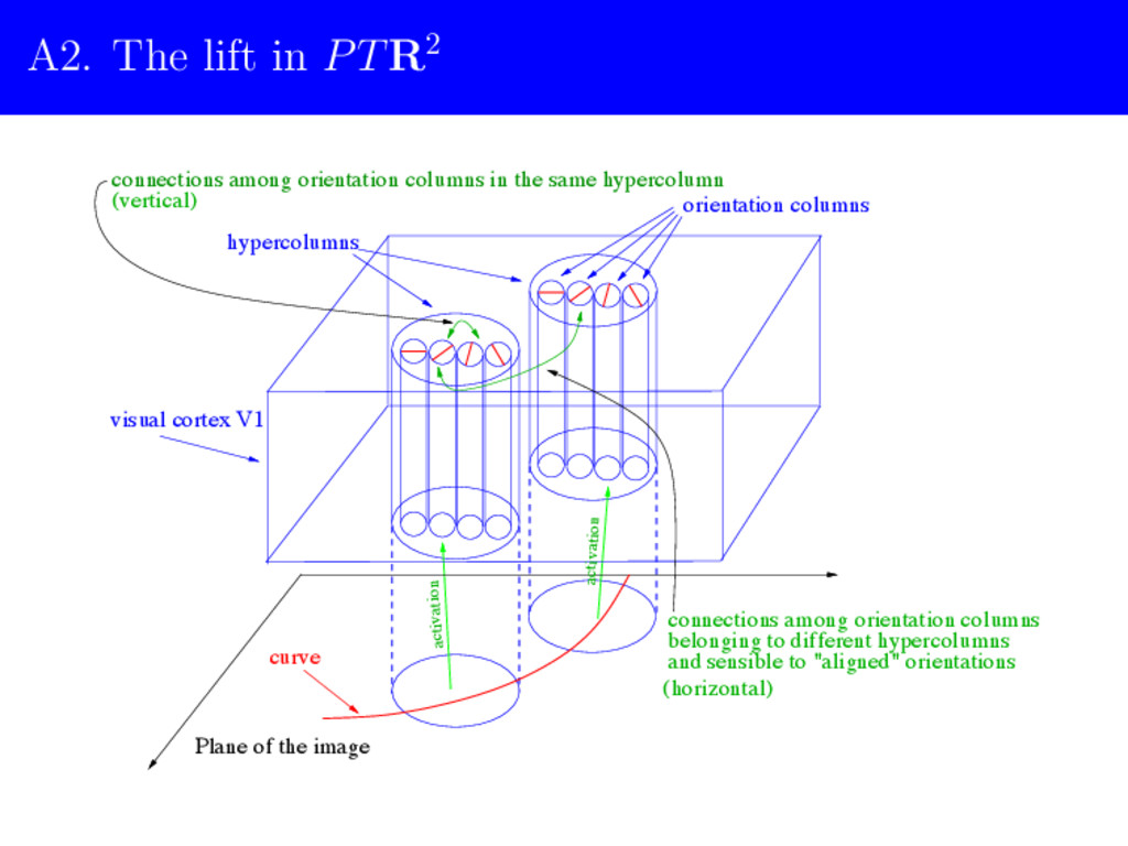 "A2. The lift in PTR2 and sensible to ""aligned"" ..."