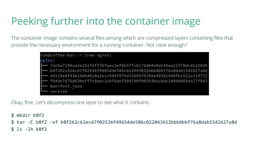 Peeking further into the container image The co...