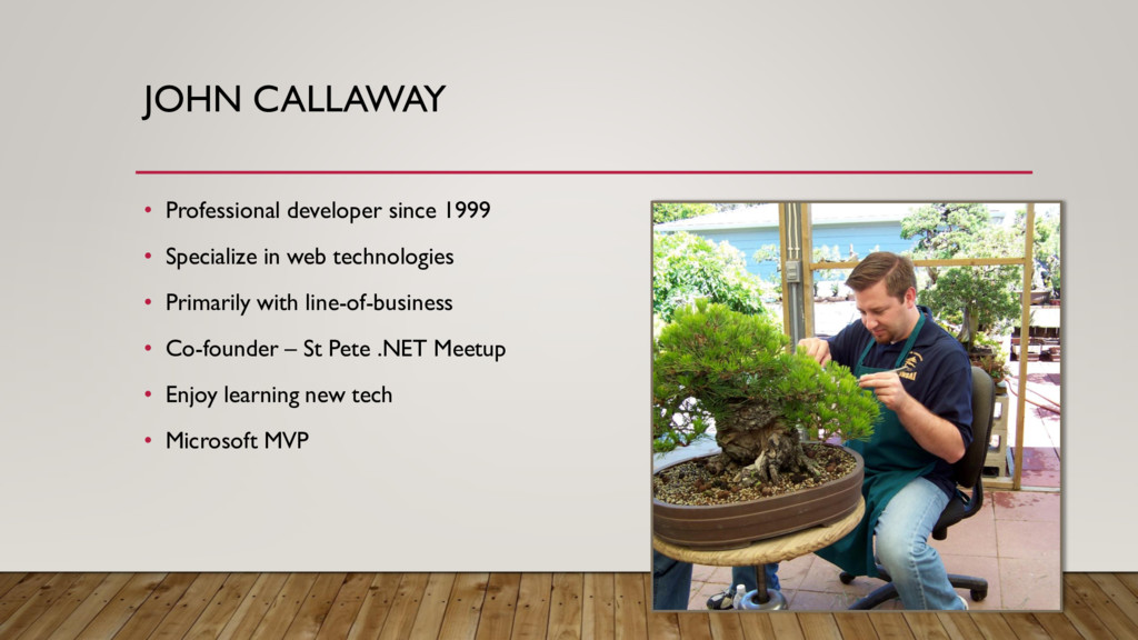 • Professional developer since 1999 • Specializ...