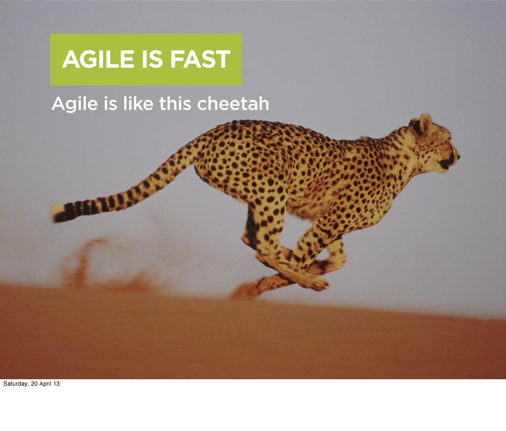 AGILE IS FAST Agile is like this cheetah