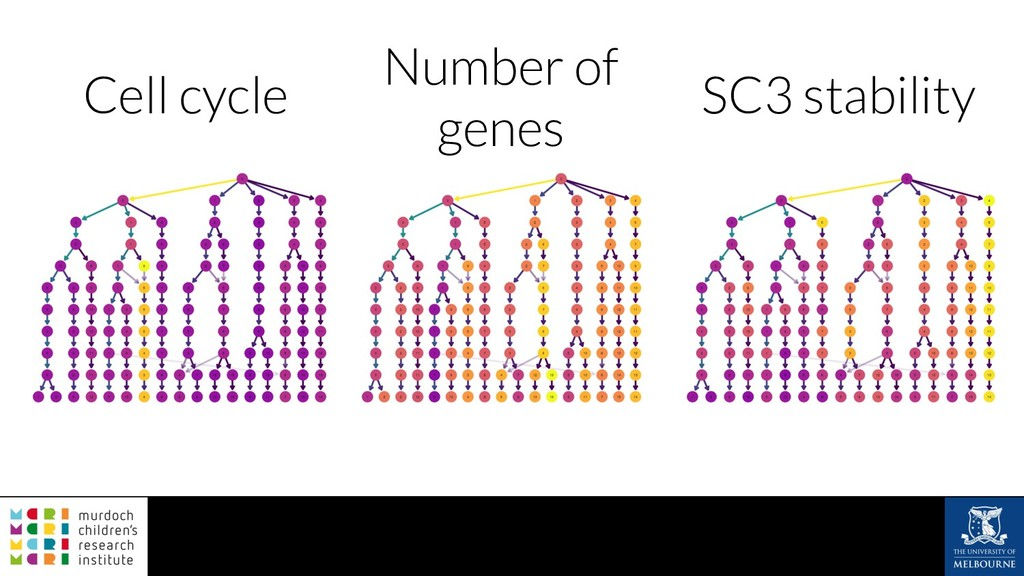 Cell cycle SC3 stability Number of genes