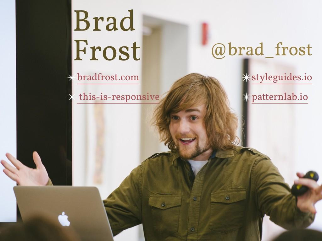 ✴styleguides.io ✴patternlab.io @brad_frost ✴bra...