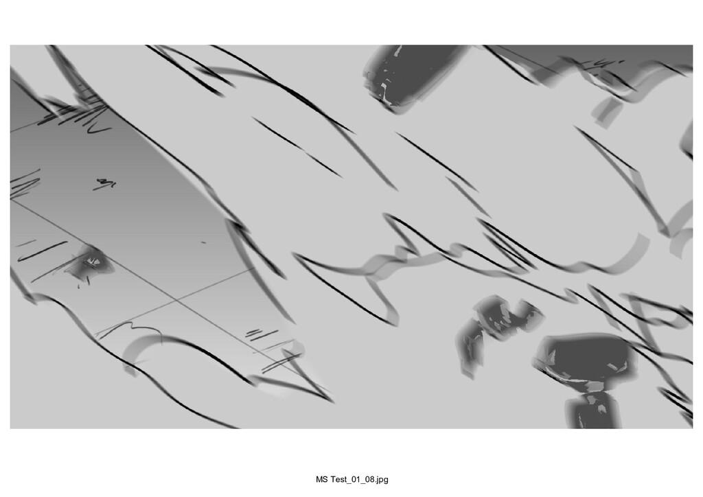 MS Test_01_08.jpg