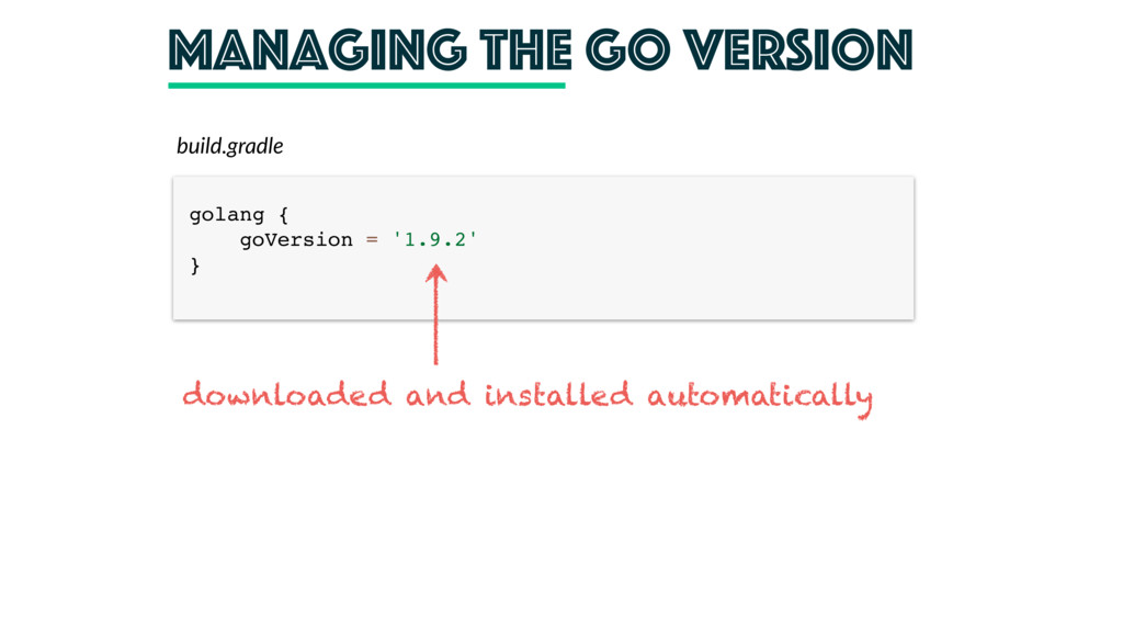 managing the Go version build.gradle golang {