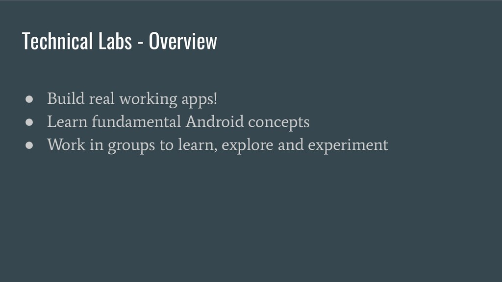 Technical Labs - Overview ● Build real working ...