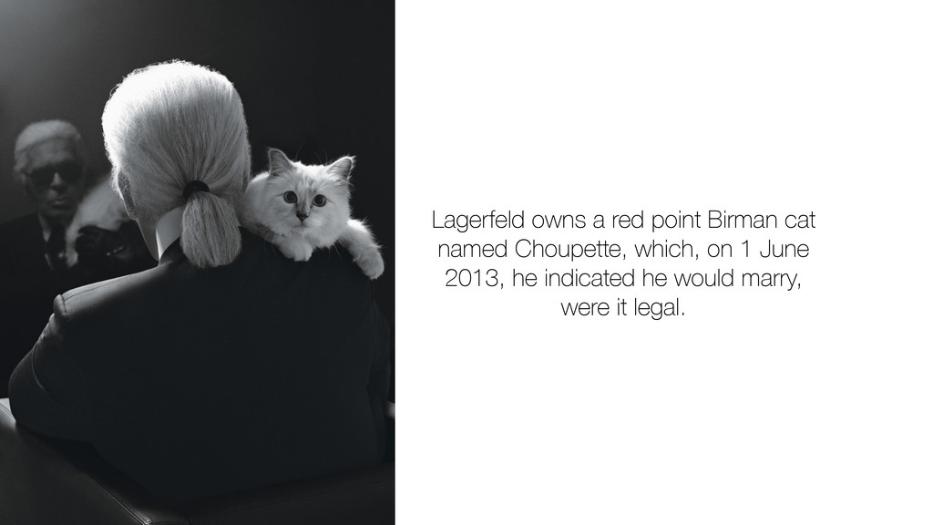 Lagerfeld owns a red point Birman cat named Cho...