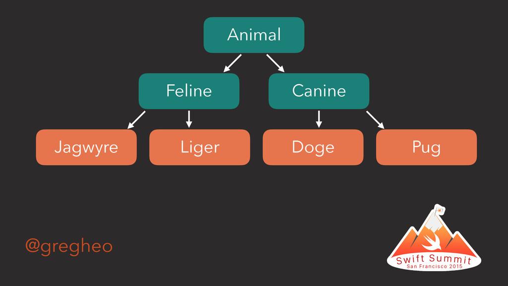 @gregheo Animal Feline Canine Doge Pug Liger Ja...