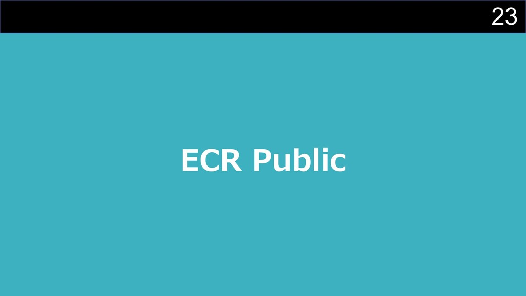 23 ECR Public