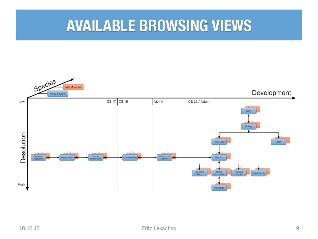 AVAILABLE BROWSING VIEWS 10.12.12 Fritz Leksc...
