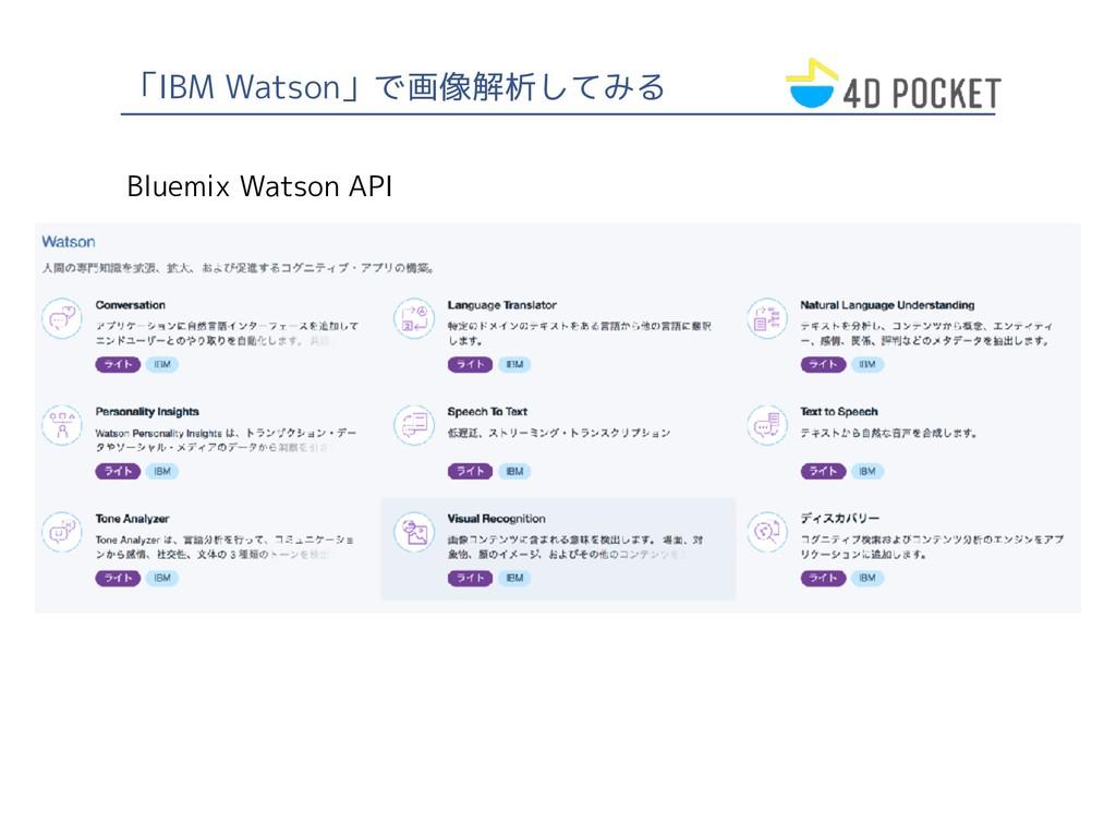 「IBM Watson」で画像解析してみる Bluemix Watson API