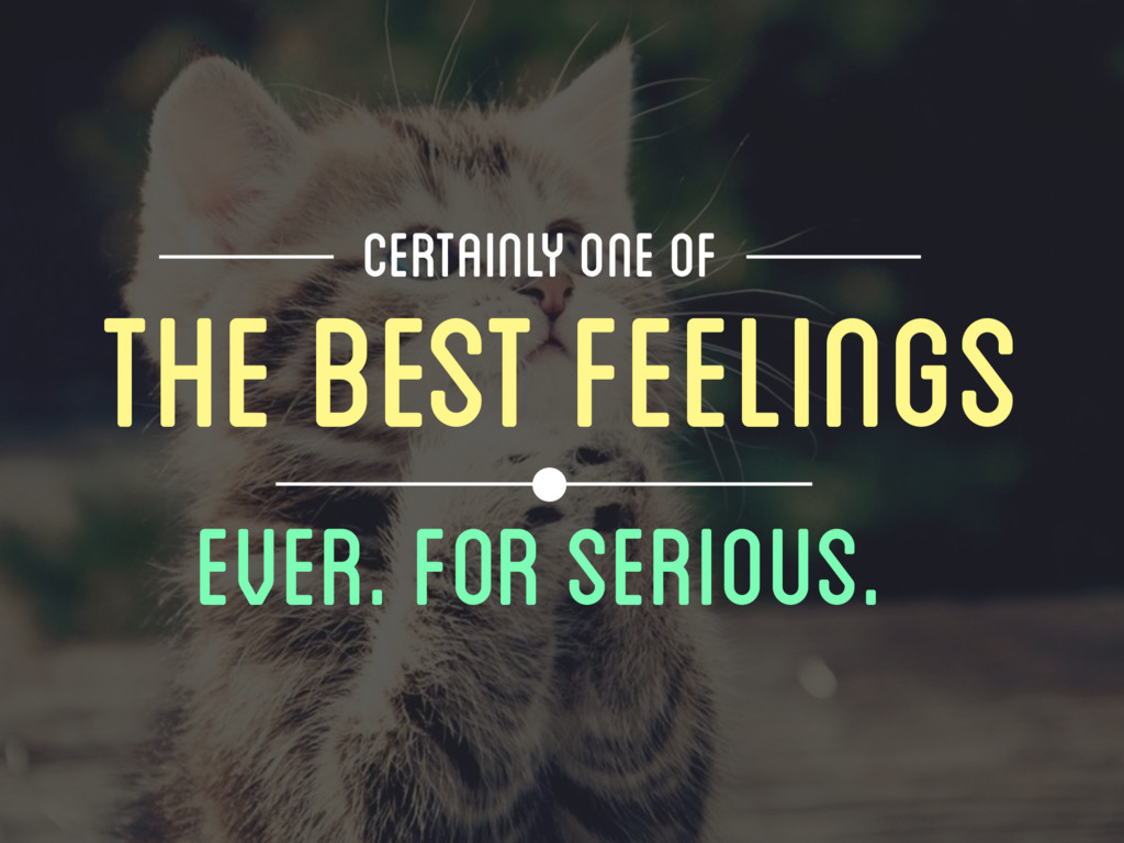 THE BEST FEELINGS Ever. For Serious. CERTAINLY ...