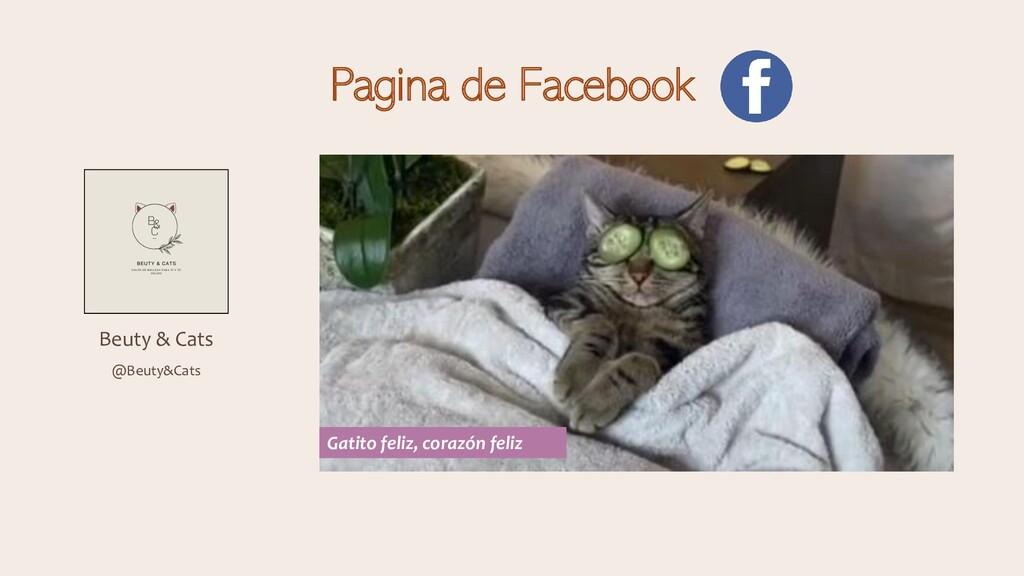 Pagina de Facebook Beuty & Cats @Beuty&Cats Gat...