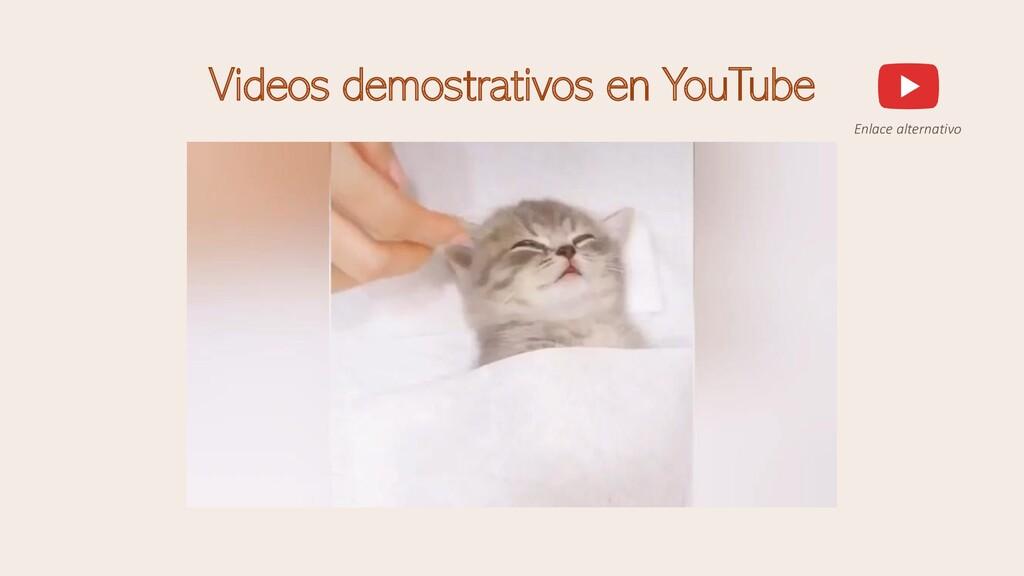 Videos demostrativos en YouTube Enlace alternat...