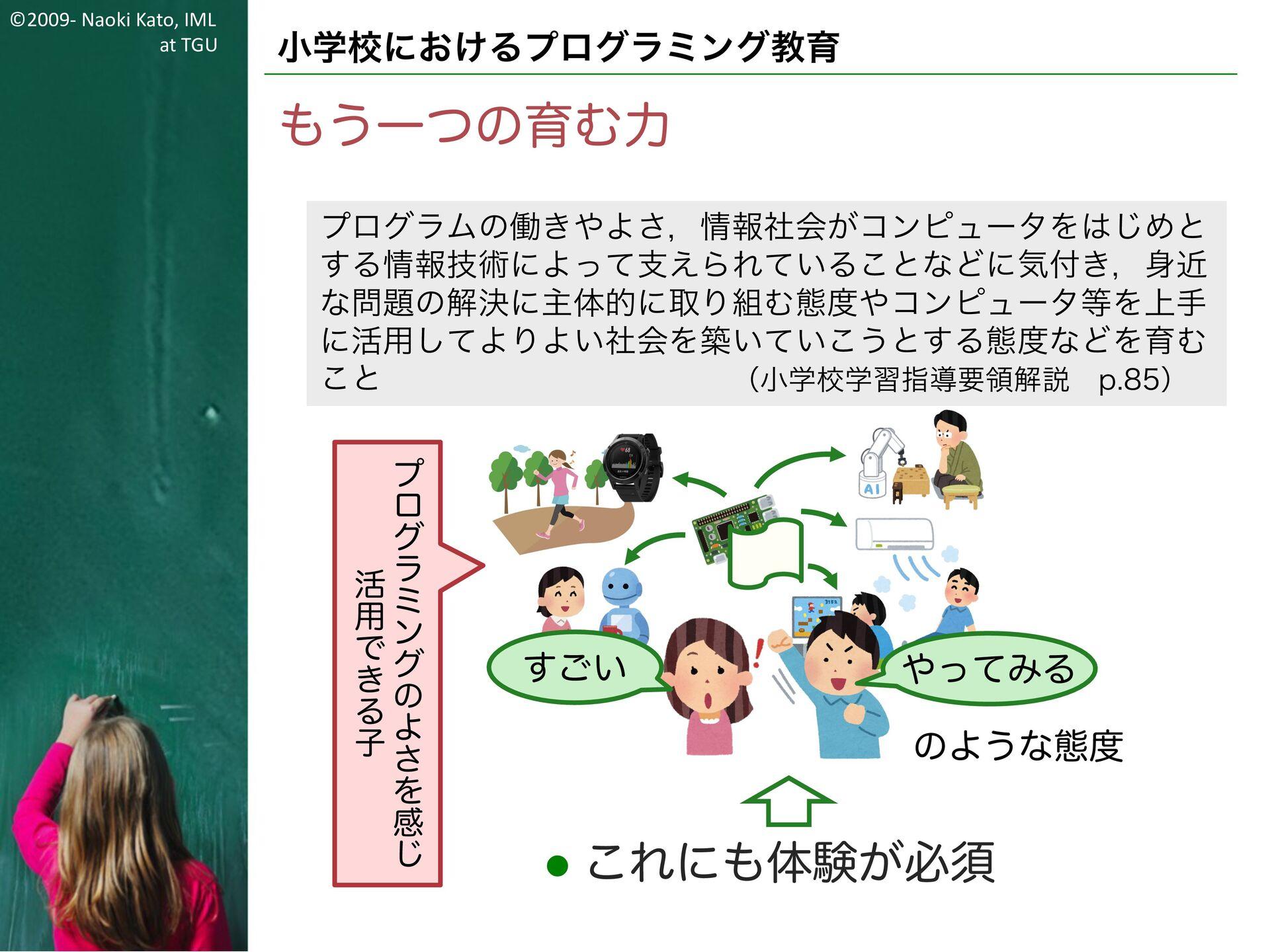 ©2009- Naoki Kato, IML at TGU プログラミング教育の展開 学習指導...