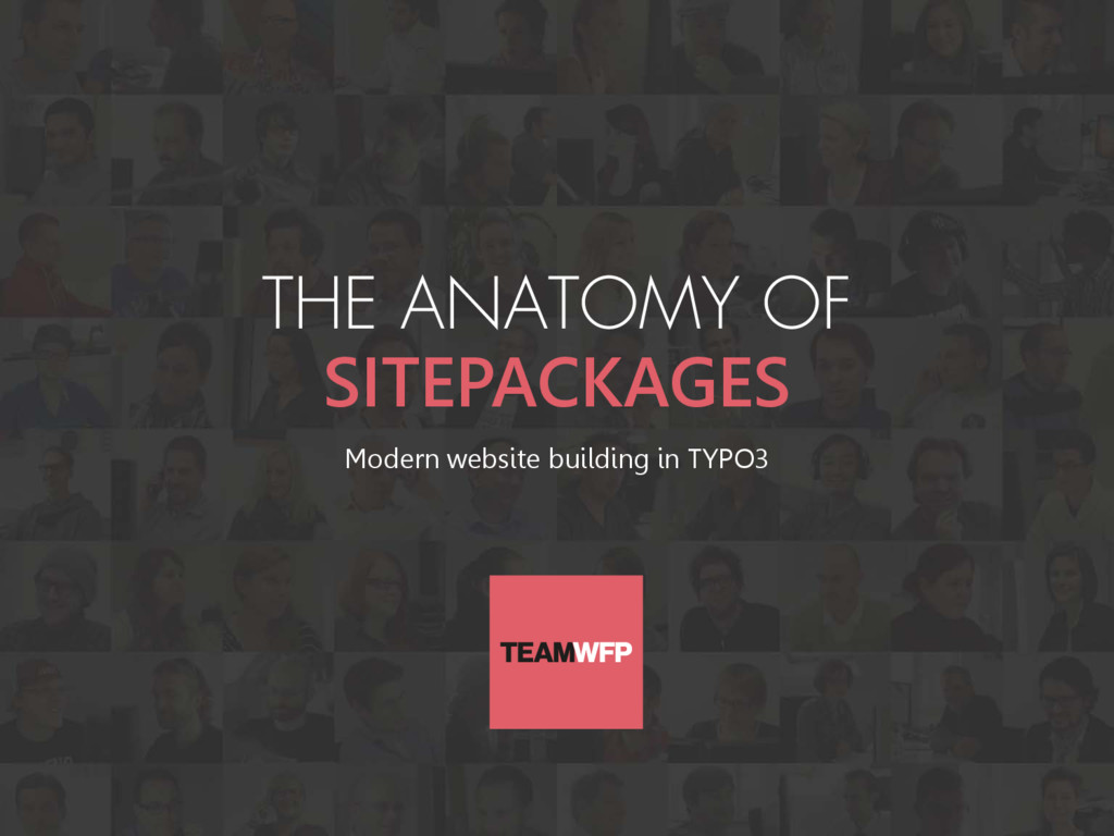 THE ANATOMY OF SITEPACKAGES Modern website buil...