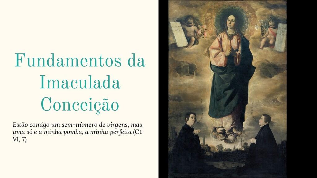 Fundamentos da Imaculada Conceição Estão comigo...