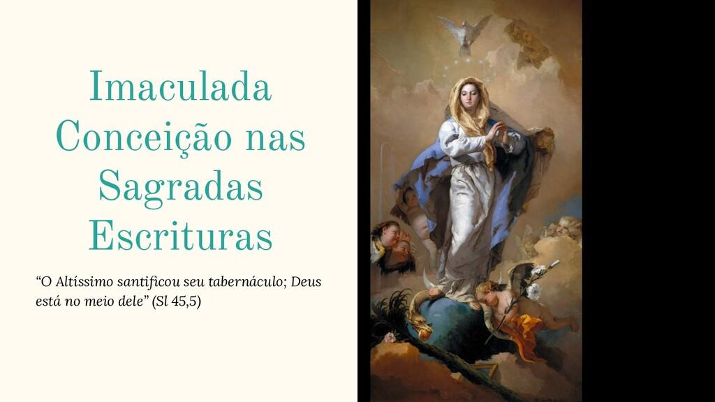 """Imaculada Conceição nas Sagradas Escrituras """"O ..."""