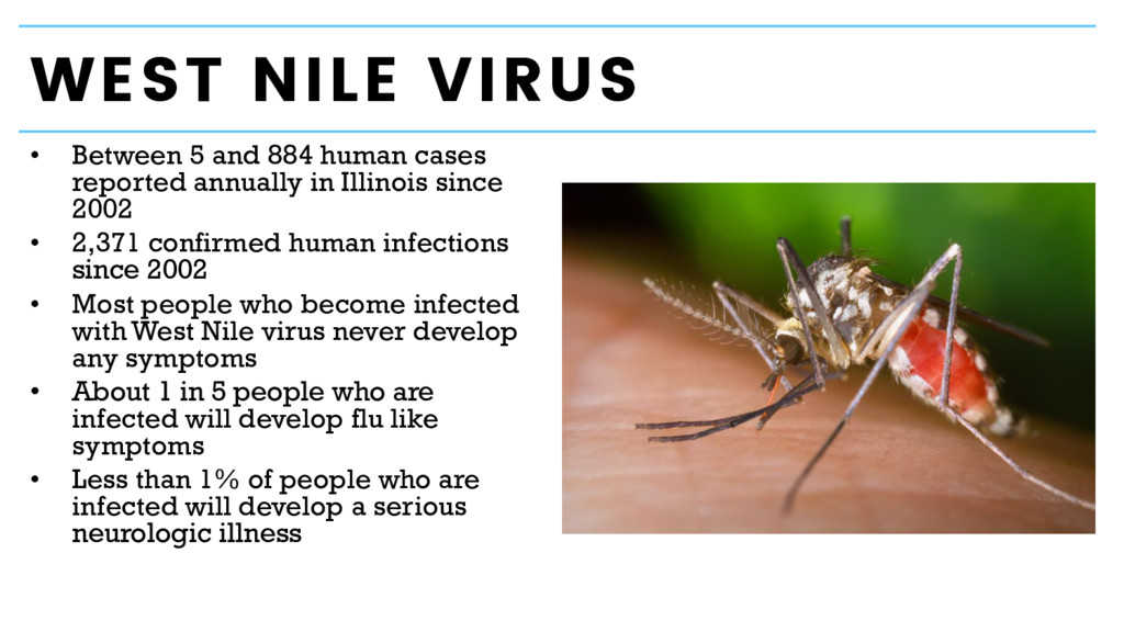 WEST NILE VIRUS • Between 5 and 884 human cases...