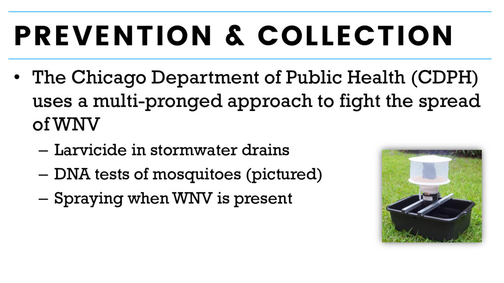 PREVENTION & COLLECTION • The Chicago Departmen...