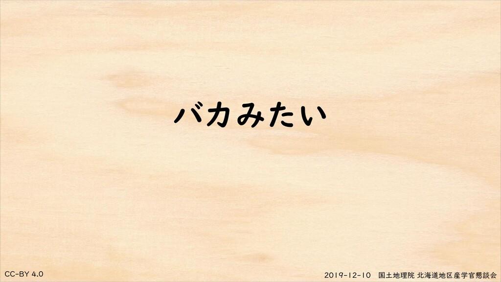 CC-BY 4.0 2019-12-10 国土地理院 北海道地区産学官懇談会 バカみたい