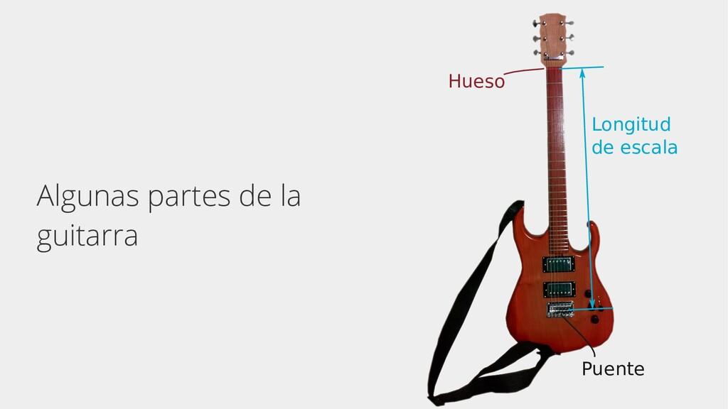 Algunas partes de la guitarra Hueso Puente Long...