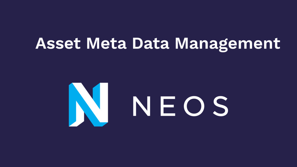 Asset Meta Data Management