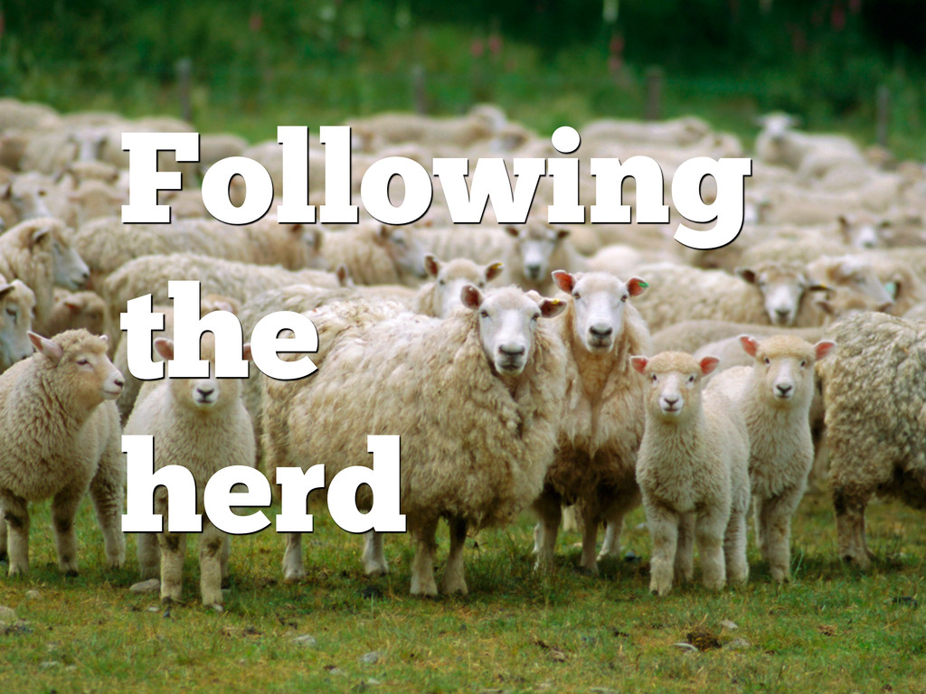 Following the herd