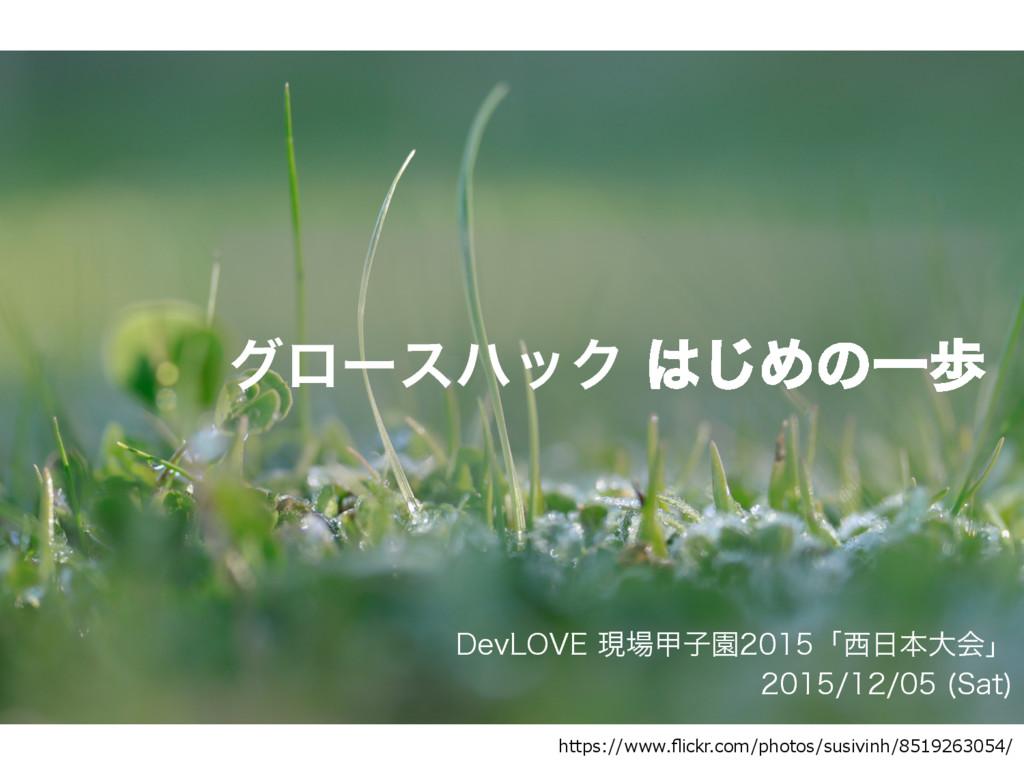 άϩʔεϋοΫ͡ΊͷҰา  https://www.flickr.com/photos/s...