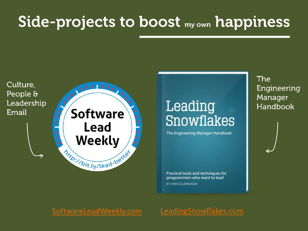 SoftwareLeadWeekly.com LeadingSnowflakes.com