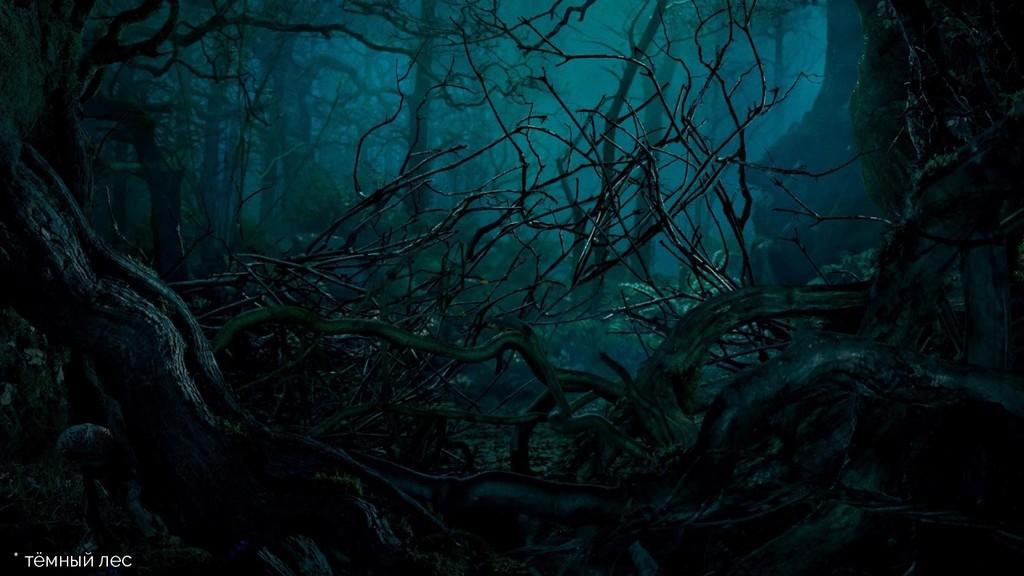 * тёмный лес
